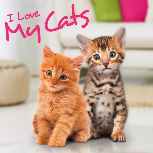 I Love My Cats - Packshot